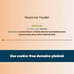 Use cookie-free domains çözümü