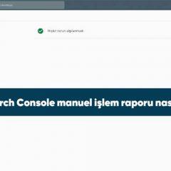 Google Search Console manuel işlem raporu nasıl kullanılır?
