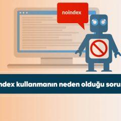 Noindex kullanmanın neden olduğu sorunlar